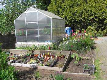 Jardinage_Serre